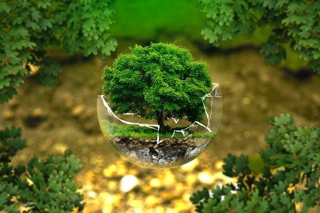 Saving Earth through terraforming