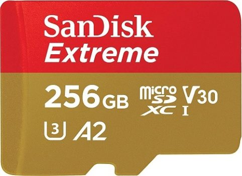 SanDisk 256GB Memory Card (Nintendo Switch)
