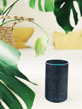 The Unspoken Truth About Voice-Controlled Smart Assistants