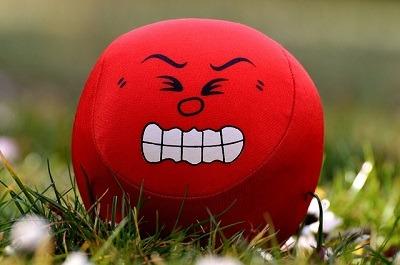 Nexus Mods Anger